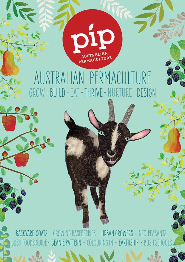 Pip_Issue8_Fullcover_05LOWRES.jpg